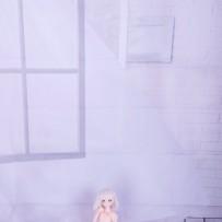 白ホリ  ドール向け 2018.6